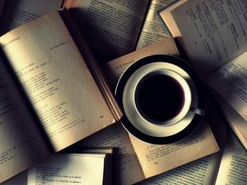 Cafe-litteraire-a-la-mediatheque-de-Grez-en-Bouere_large
